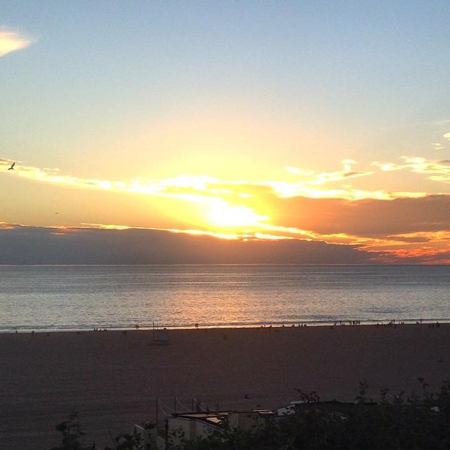 Goodnight Santa Monica. ❤️